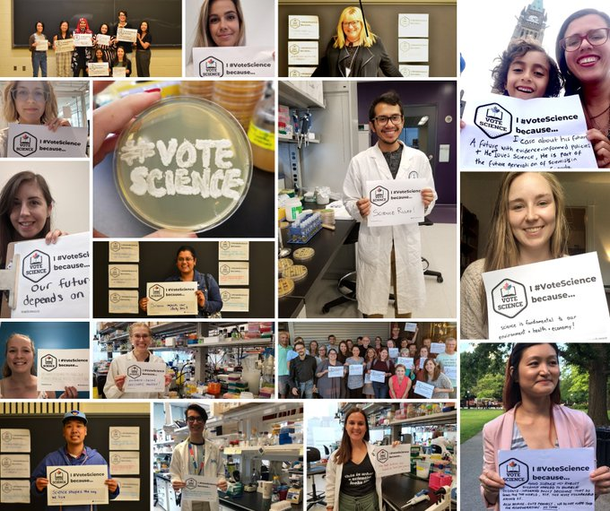 Collage of different #VoteScience related photos.